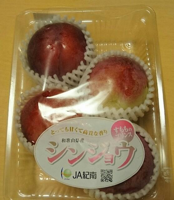 f:id:kiha-gojusan-hyakusan:20170704232955j:image