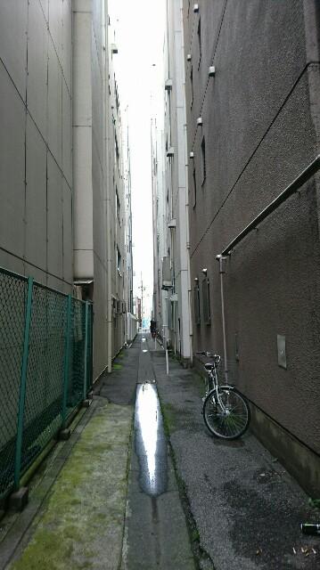 f:id:kiha-gojusan-hyakusan:20170708221221j:image