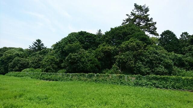 f:id:kiha-gojusan-hyakusan:20170716145330j:image