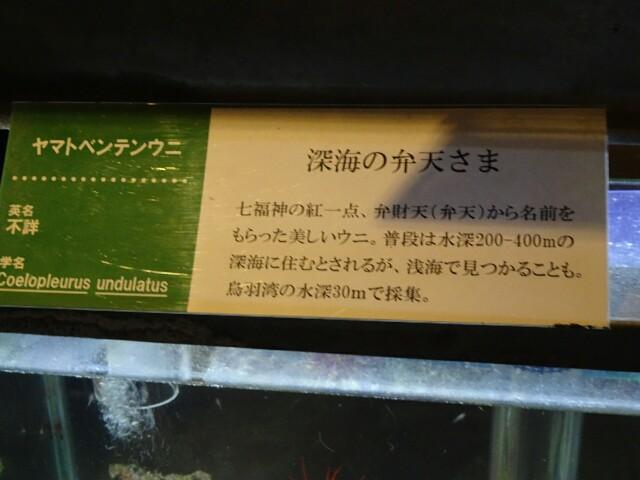 f:id:kiha-gojusan-hyakusan:20170722000718j:image