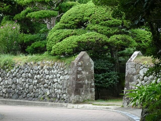 f:id:kiha-gojusan-hyakusan:20170905225249j:image