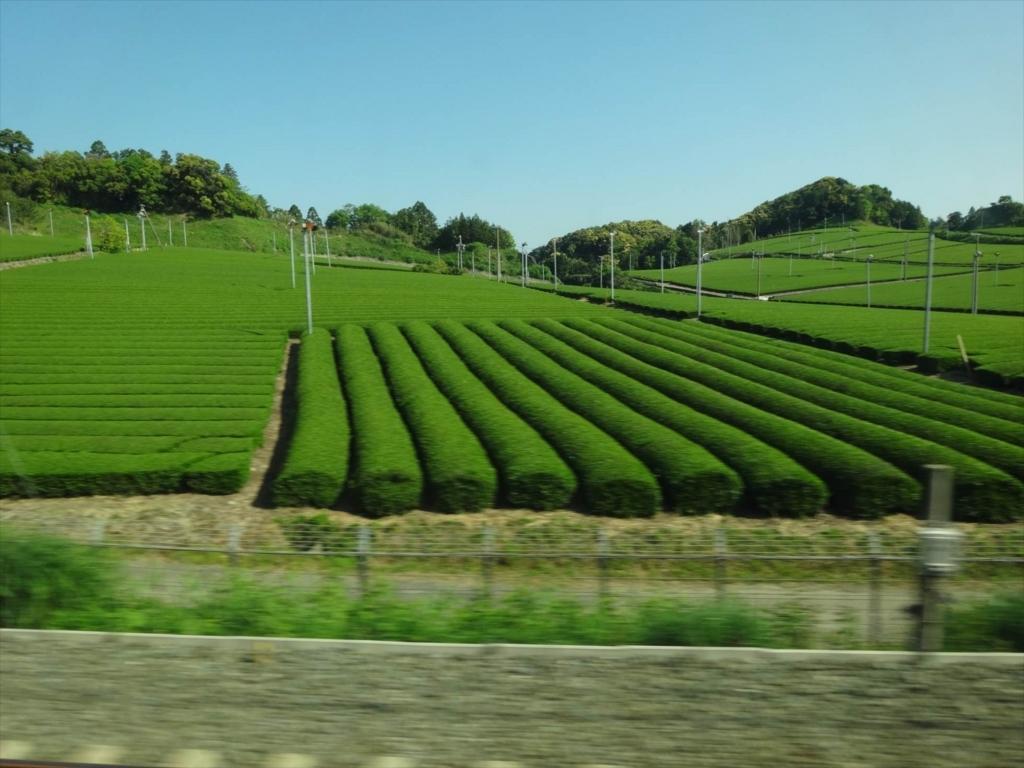 f:id:kiha-gojusan-hyakusan:20170912001856j:plain