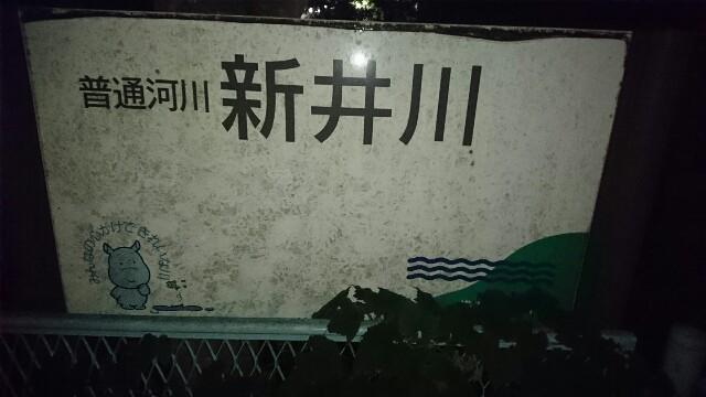 f:id:kiha-gojusan-hyakusan:20171002223524j:image