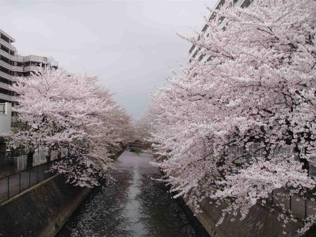 f:id:kiha-gojusan-hyakusan:20171015023727j:plain