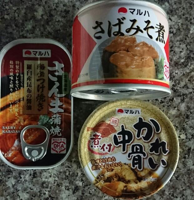 f:id:kiha-gojusan-hyakusan:20171101001705j:image
