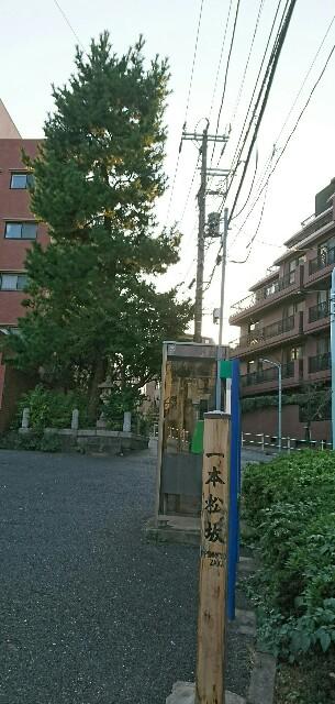 f:id:kiha-gojusan-hyakusan:20171117013733j:image