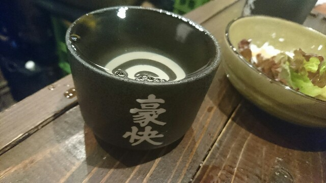 f:id:kiha-gojusan-hyakusan:20171215233730j:image