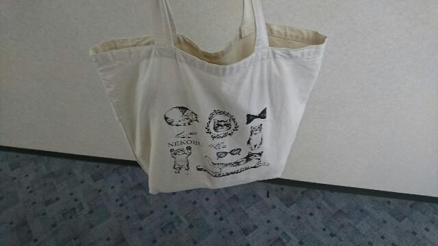 f:id:kiha-gojusan-hyakusan:20180101145304j:image