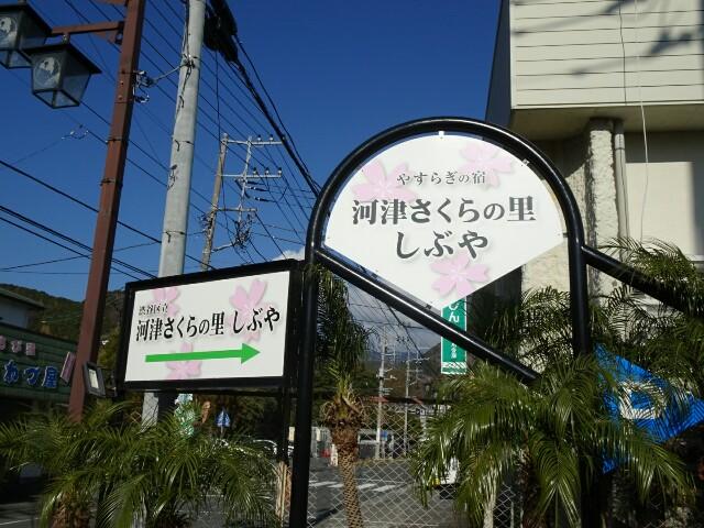 f:id:kiha-gojusan-hyakusan:20180101203005j:image