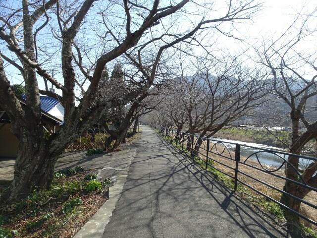 f:id:kiha-gojusan-hyakusan:20180101204443j:image