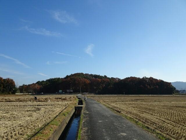 f:id:kiha-gojusan-hyakusan:20180113021546j:image