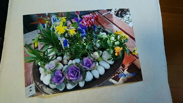 f:id:kiha-gojusan-hyakusan:20180204192600j:image