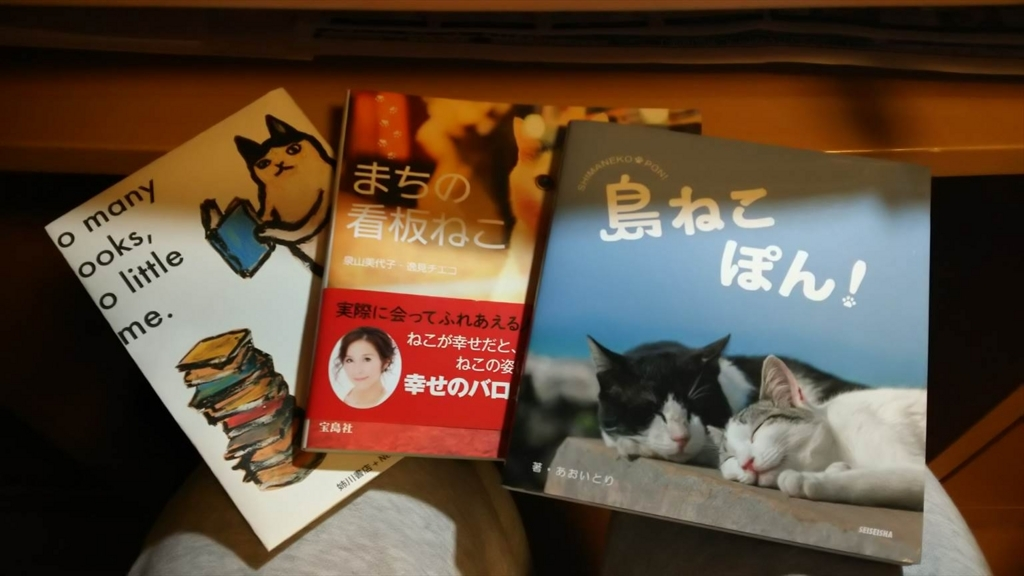 f:id:kiha-gojusan-hyakusan:20180224003240j:plain