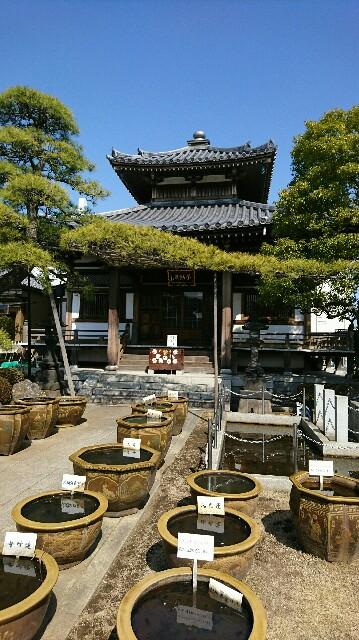 f:id:kiha-gojusan-hyakusan:20180304224219j:image