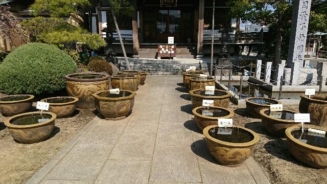 f:id:kiha-gojusan-hyakusan:20180304224452j:image