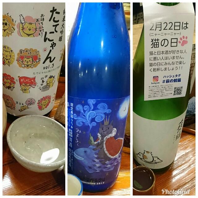 f:id:kiha-gojusan-hyakusan:20180310014244j:image