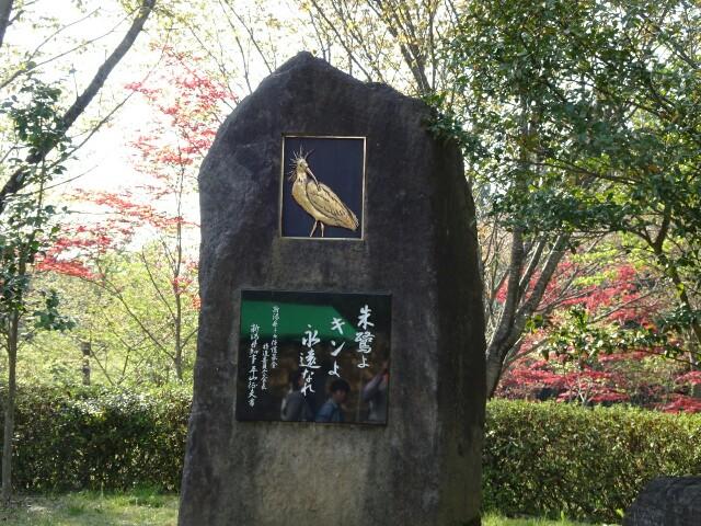f:id:kiha-gojusan-hyakusan:20180428224311j:image