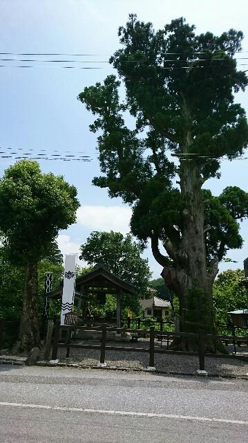 f:id:kiha-gojusan-hyakusan:20180611131454j:image