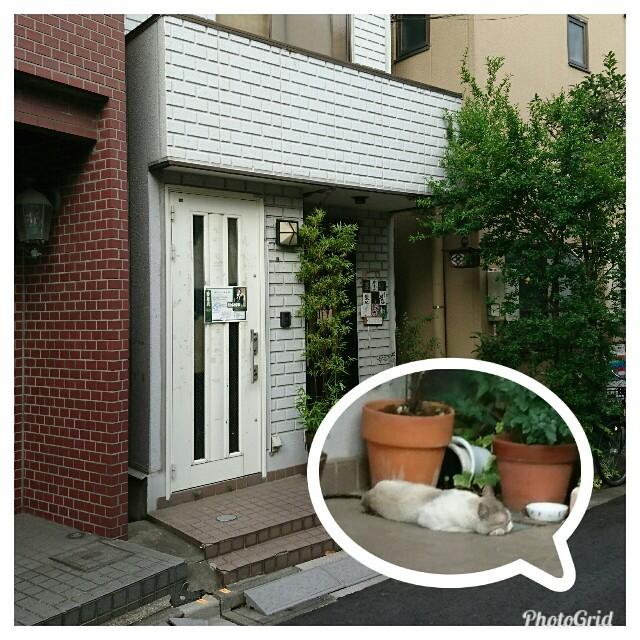 f:id:kiha-gojusan-hyakusan:20180717072044j:image