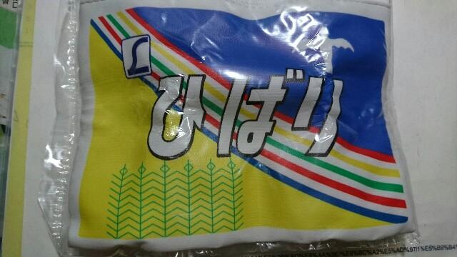 f:id:kiha-gojusan-hyakusan:20181012045353j:image