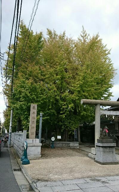 f:id:kiha-gojusan-hyakusan:20181028042514j:image