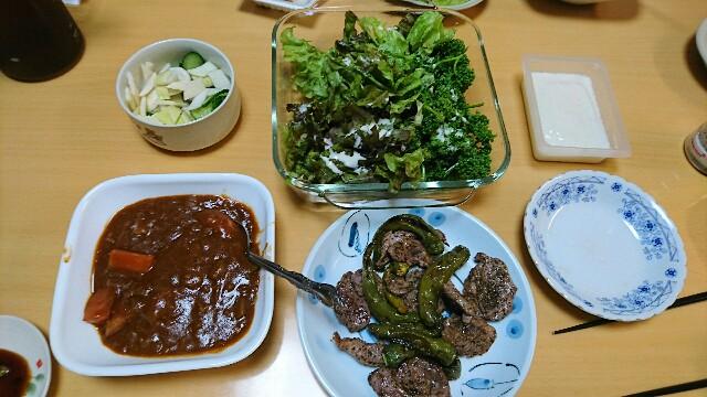 f:id:kiha-gojusan-hyakusan:20181108234501j:image