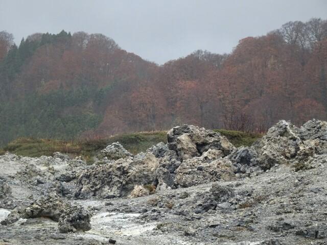 f:id:kiha-gojusan-hyakusan:20181110024645j:image