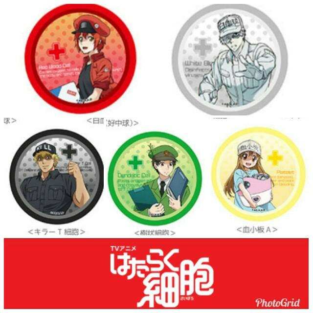 f:id:kiha-gojusan-hyakusan:20181201044847j:image