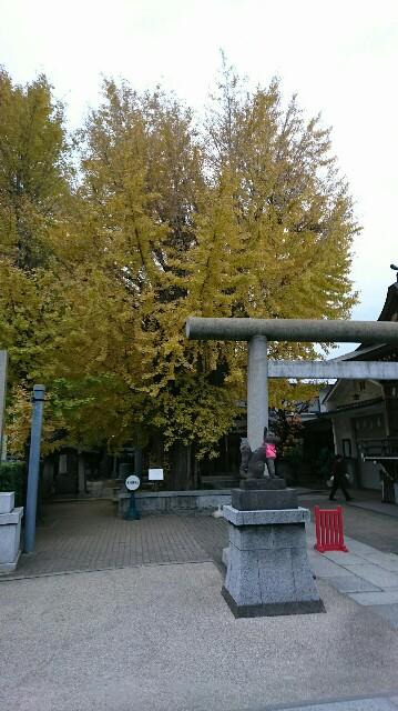 f:id:kiha-gojusan-hyakusan:20181206010435j:image