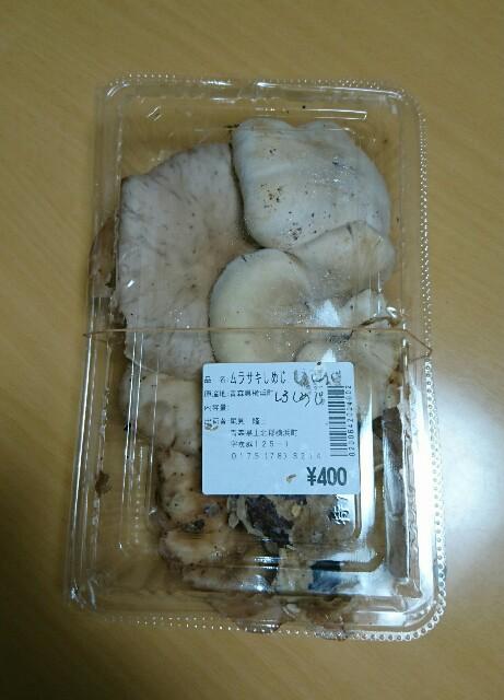 f:id:kiha-gojusan-hyakusan:20181206081326j:image