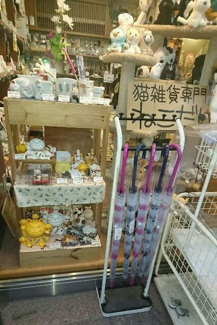 f:id:kiha-gojusan-hyakusan:20190106222308j:image