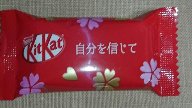 f:id:kiha-gojusan-hyakusan:20190115235211j:image