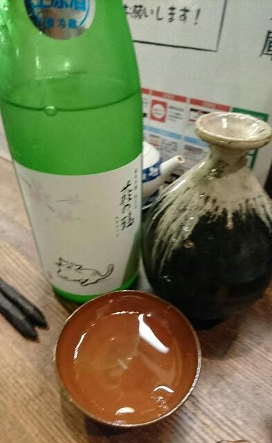 f:id:kiha-gojusan-hyakusan:20190223231247j:image