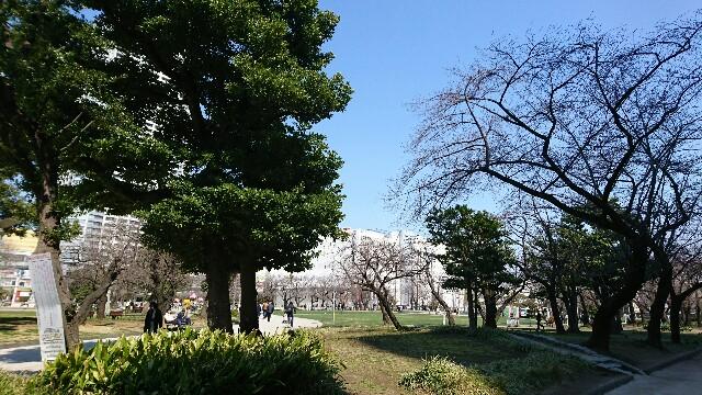 f:id:kiha-gojusan-hyakusan:20190315124322j:image