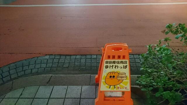 f:id:kiha-gojusan-hyakusan:20190328200003j:image