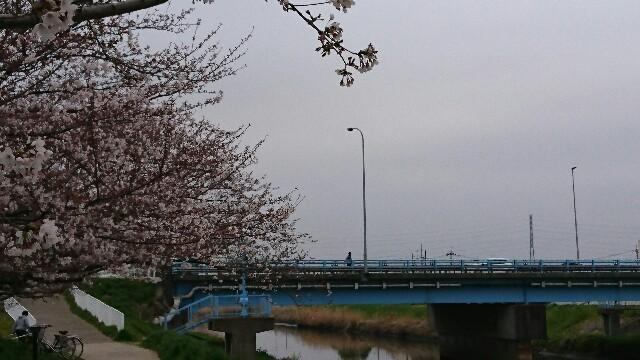 f:id:kiha-gojusan-hyakusan:20190330233803j:image
