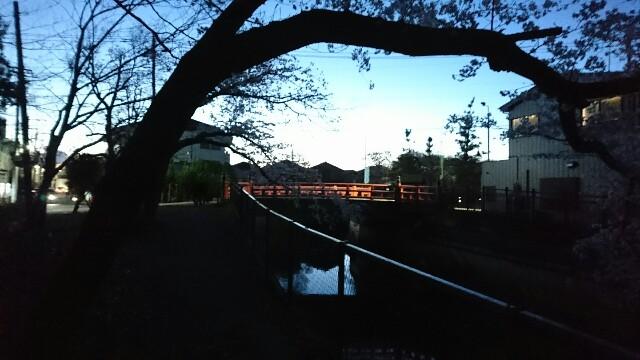 f:id:kiha-gojusan-hyakusan:20190405021114j:image