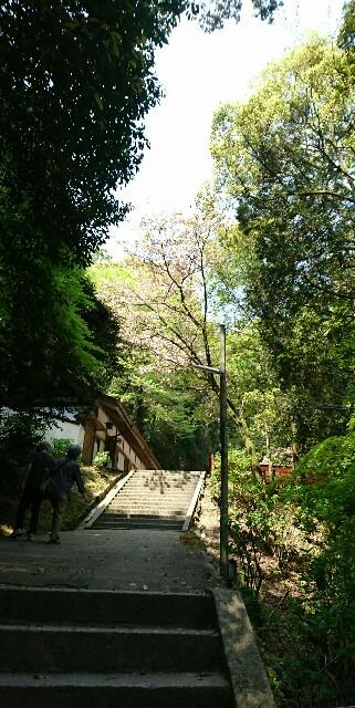f:id:kiha-gojusan-hyakusan:20190422225919j:image
