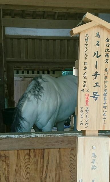 f:id:kiha-gojusan-hyakusan:20190424232328j:image