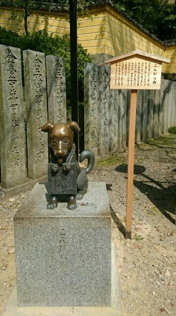 f:id:kiha-gojusan-hyakusan:20190425121218j:image