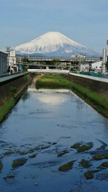 f:id:kiha-gojusan-hyakusan:20190428225316j:image
