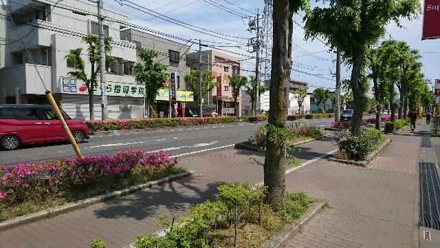 f:id:kiha-gojusan-hyakusan:20190511130131j:image