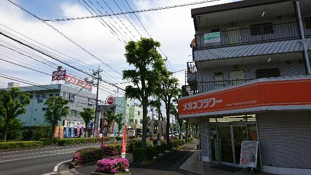 f:id:kiha-gojusan-hyakusan:20190511130205j:image