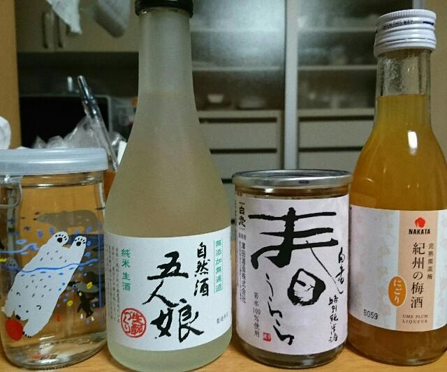 f:id:kiha-gojusan-hyakusan:20190518223308j:image
