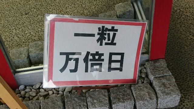 f:id:kiha-gojusan-hyakusan:20190520021059j:image
