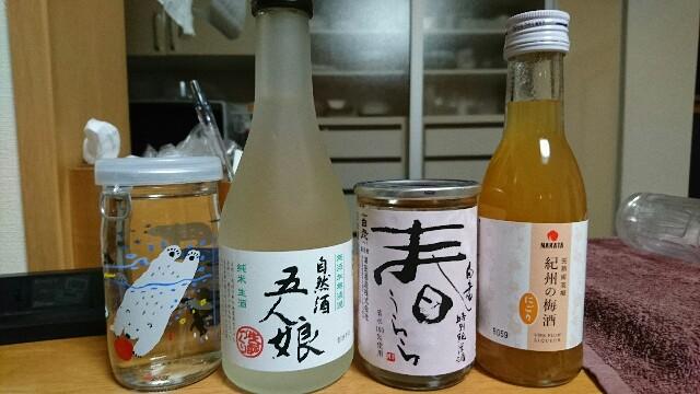 f:id:kiha-gojusan-hyakusan:20190531221903j:image