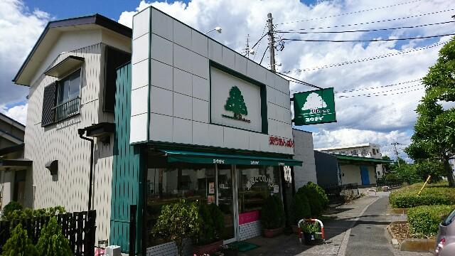 f:id:kiha-gojusan-hyakusan:20190619005946j:image