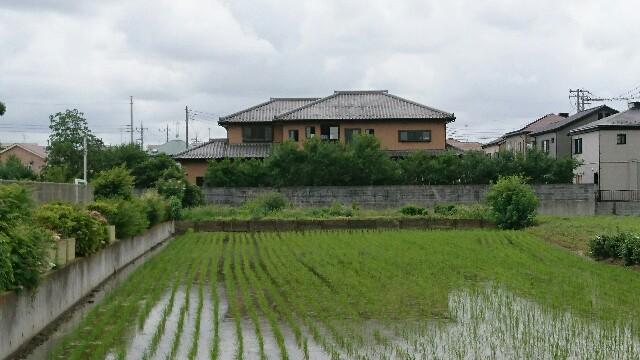 f:id:kiha-gojusan-hyakusan:20190624211345j:image