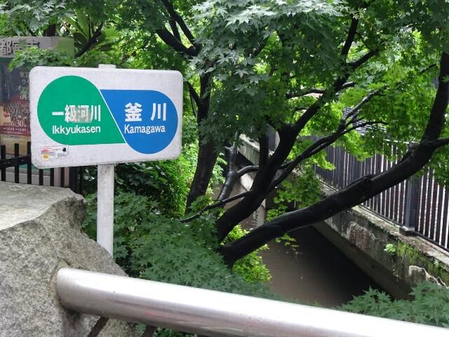 f:id:kiha-gojusan-hyakusan:20190625143459j:image