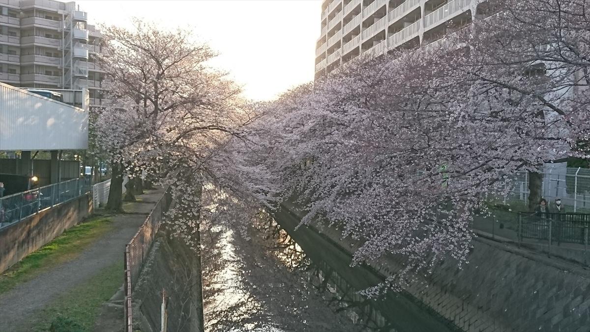 f:id:kiha-gojusan-hyakusan:20190630014318j:plain